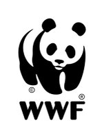 Wwf1_3