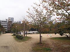 Pb060193