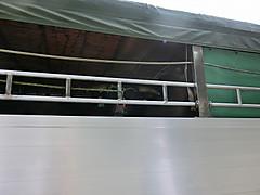 Cimg2128