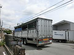 Cimg2295