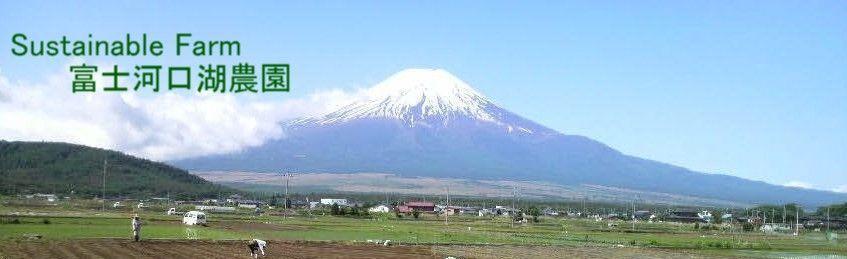 Kagamia1