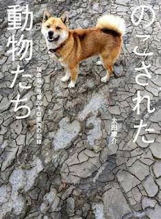 Yasusukeohta2012a11